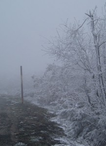 Pathway with snow and fog (Manjarín)